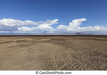 Soda Dry Lake Mud Flats in the Mojave Desert