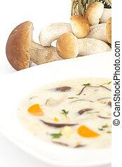 soep, paddenstoel