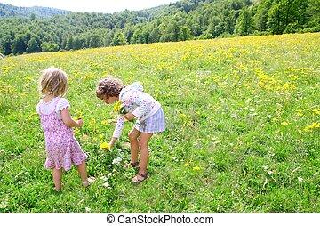 soeur, pré, printemps, filles, fleurs, jouer
