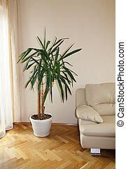 sofá, planta, moderno, encima de cierre