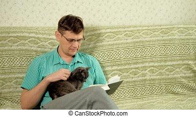 sofa, livre, lecture, homme, maison