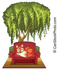 sofa, renard