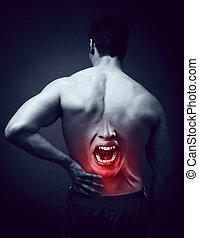sofrimento, dor, costas, homem