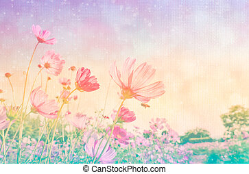 Soft focus cosmos flower on mulberry paper with bokeh ,...