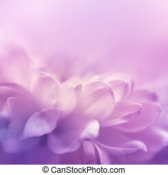 Soft focus flower background with copy space. Made with...