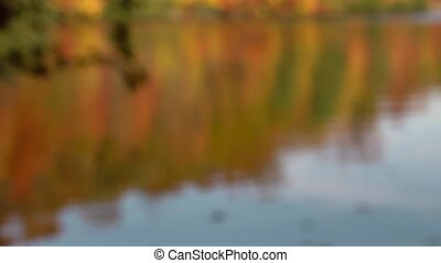 soft focused fall lake