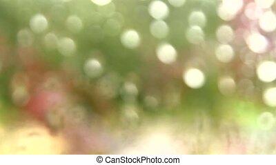 Soft focused window raindrops