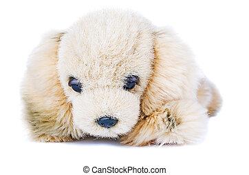 Soft plush toy dog isolated