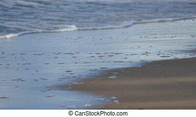 Soft Sea wave on the sandy beach - Soft Sea waves rushing on...