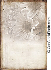 soft sepia daisies - Bridal daisy bouquet in soft sepia and ...