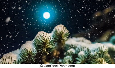 soft snowfall in the winter forest on a moonlit night, a beautiful evening winter landscape with falling snow, video loop