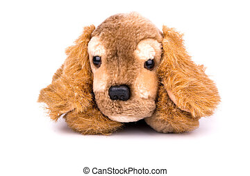 Soft toy dog - A small soft toy dog on a white background