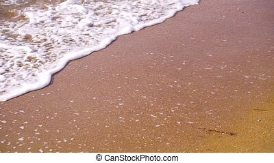 Soft wave of the sea on the sandy beach