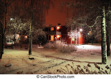 Soft winter - Winter in soft focus