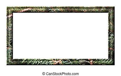Softwood frame