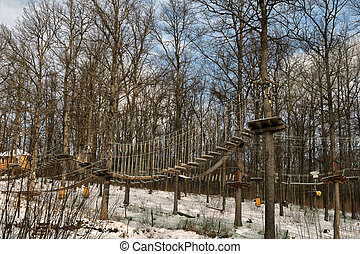 soga, forest., ruta