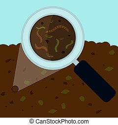 Soil analysis - Magnifying glass enlarging the worm and...