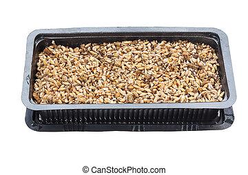 Soil and wheat seed in tray