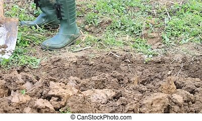 Soil Digging - Digging earth by gardening spade in plastic...