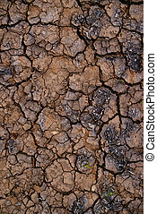 Soil drought and mud cracks in dry land