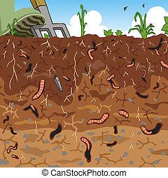 Soil - Editable vector illustration of earthworms in garden...