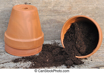 soil in a pot for repotting