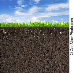 Soil or dirt section with grass under sky as background - ...