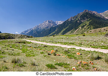 Soil road. Tien Shan mountains, Kyrgyzstan