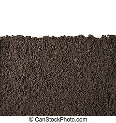 Soil section texture isolated on white - Soil or dirt...