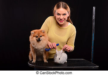 soins personnels, chien, lapin