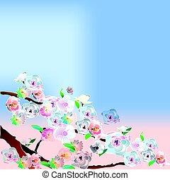 soir, arbre, sakura
