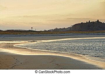 soir, idyllique, plage, grue, temps