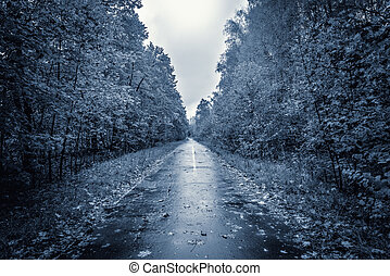 soir, road., vue
