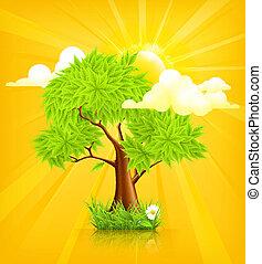 sol, 10eps, árvore