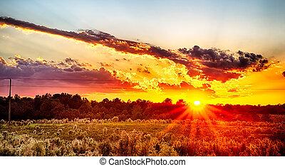 sol, armando, sobre, país, terra fazenda, em, york, carolina sul