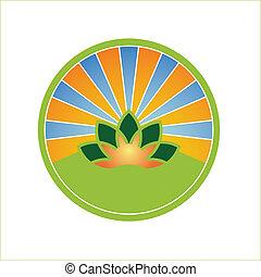 sol, campo, escudo