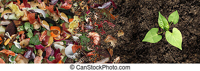 sol, composted, cycle