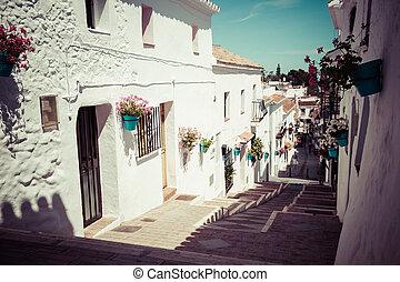 sol., costa, blume, malerisch, südlich, töpfe, andalusian, straße, del, mijas, village., weißes, facades., spanien