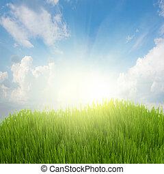 sol creciente, y, hierba verde, debajo, cielo azul