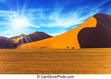 sol, de, el, desierto de namib