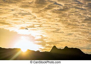 sol, encima, colinas, en, galapagos