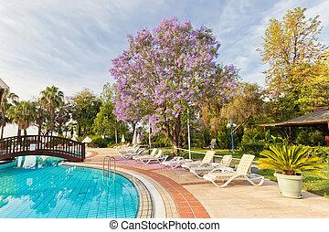 sol, hotel, camas, vista, piscina, natação