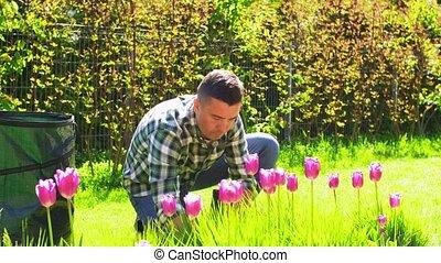 sol, jardin, sac, fleurs, fonctionnement, homme