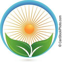 sol, logotipo, verde, leafs