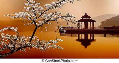 sol, måne, insjö, taiwan
