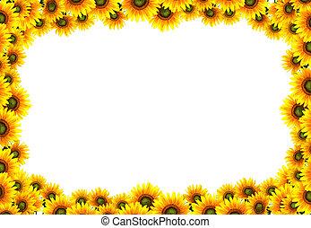 sol, marco, flor