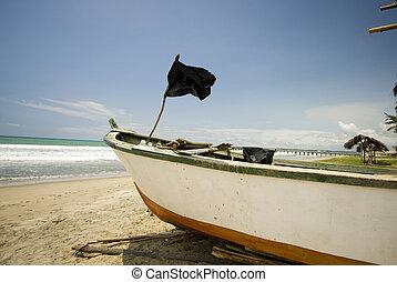sol, ruta, del, エクアドル, ボート, 釣り