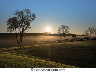 sol, subidas, encima, brumoso, colinas, de, kentucky