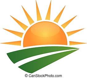 sol, y, verde, camino, logotipo