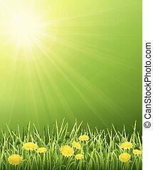 solaire, paysage